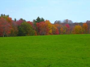 Colorful New England Landscape